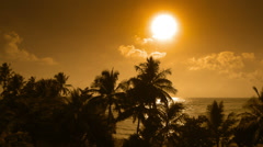Coconut palm trees silhouettes on a background of the tropical ocean in the e Stock Footage
