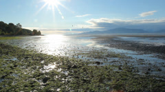 Vancouver Beach. Stock Footage