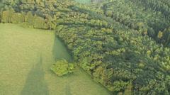 Halfridge wood Crocker End2-Progressive Stock Footage