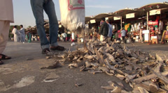 Dried shark fins in the Dubai fish market Stock Footage