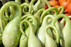 ornate bright green pumpkins - stock photo