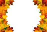 Stock Photo of round border composed of autumn leaves
