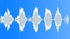 Beagle Howling Sound Effect