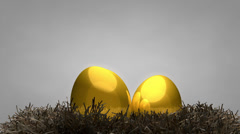 Golden egg and nest, concept, value, animal, fetus, gold. Stock Footage