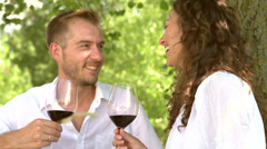 Beautiful Young Couple Having Picnic in Countryside Stock Footage