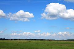Typical dutch landscape Stock Photos