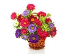bouquet of colorful asters flowers in cane basket - stock photo
