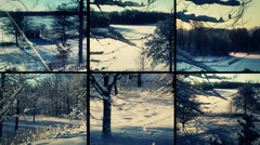 Winter Snow and Sun In Forest split screen Instagram Stock Footage