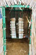 Mushroom cultivation Stock Photos