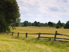 old fence and meadow - stock photo