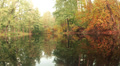 Beautiful autumn landscape with a pond HD Footage