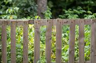Stock Photo of old wooden fence on the nature