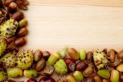 two-sided frame of natural fall material - horse chestnuts, acorns, cobnuts a - stock photo