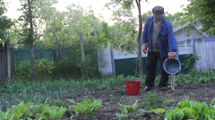 Farmer take care of vegetable yard and irrigate  water to the plants Stock Footage