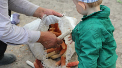 Dear memories, grandson and grandfather work together put the cob corn in sack Stock Footage