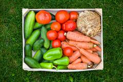 Fresh vegetable in wooden box Stock Photos