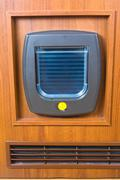cat flap - stock photo