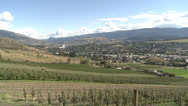 Stock Video Footage of hillside orchards north Okanagan, partially harvested, wide shot