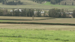 Agriculture, partially harvested cornfield, pan medium long shot Stock Footage