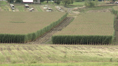 Agriculture, partially harvested cornfield long shot Stock Footage
