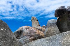 Bizarre rock (hin ta rock) on blue sky with could, samui island , surat thani Stock Photos
