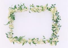 Frame of Flower - stock photo