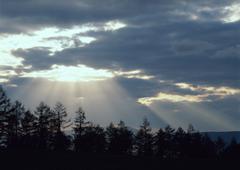 Rays of Sunlight Beam Stock Photos