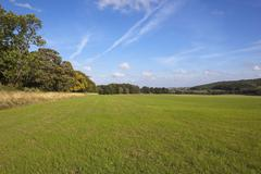 yorkshire wolds pasture - stock photo