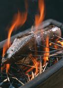 Lightly-roasted Bonito - stock photo