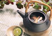 Stock Photo of Boiled Dish in Teapot of Matsutake Mushroom