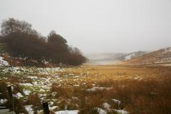 winter on the north yorkshire moors - stock photo