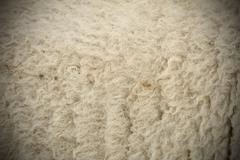 White sheep fur with vignette Stock Photos