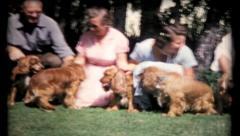 Dogs and owners pose for camera in backyard, 504 vintage film home movie Stock Footage