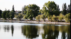 Ttrees  lengthwise River Stock Footage
