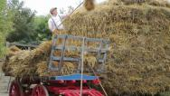 Stock Video Footage of man using pitch fork to toss hay onto haystack