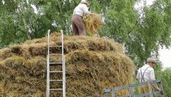 Man using pitch fork to toss hay onto haystack Stock Footage