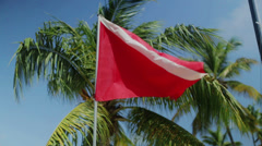 Dive flag in the wind under a palm tree in the blue sky Stock Footage