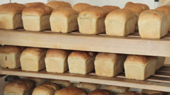 Rows of freshly made bread loaves Stock Footage
