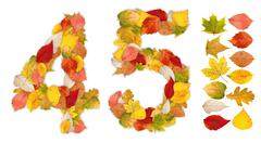 numbers 4 and 5 made of autumn leaves - stock photo