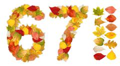 Numbers 6 and 7 made of autumn leaves Stock Photos
