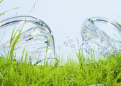 Stock Photo of Grassland and bubbles