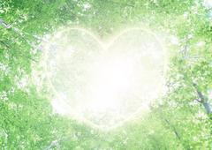 Ecology of fresh green and heart - stock photo