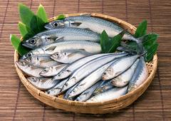 Fishery Products - stock photo