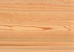 Stock Photo of Akita Cedar