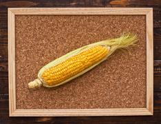 ear of corn on bulletin board - stock photo