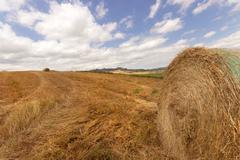 Stock Photo of bale of hay
