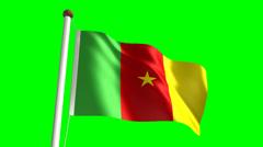 Cameroon flag Stock Footage