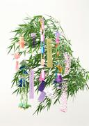 Star Festival Decoration - stock photo