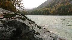 Rocky shore of a mountain river Katun in Altay, Russia Stock Footage