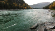 Stock Video Footage of Mountain Katun river in the Altai, Russia
